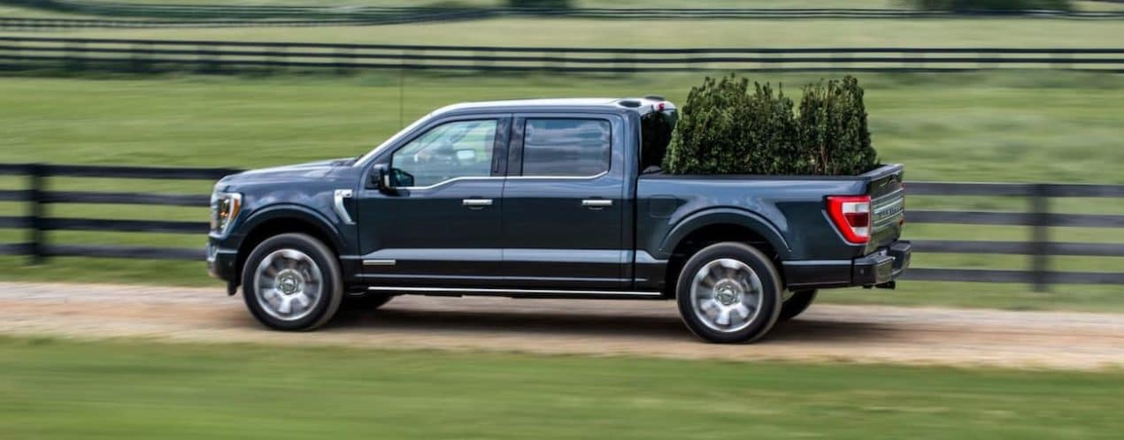 A dark blue 2021 Ford F-150 is shown from the side carrying shrubs past a black fence.